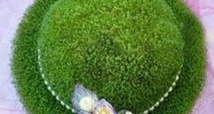 خاکشیر برای سبزه