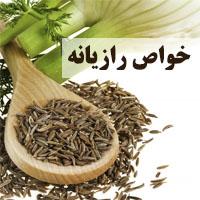 رازیانه ایرانی