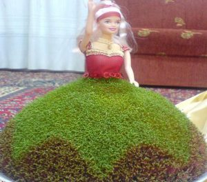 سبزه خاکشیر به شکل عروسک