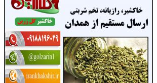 قیمت رازیانه خوش عطر و خاکشیر همدان