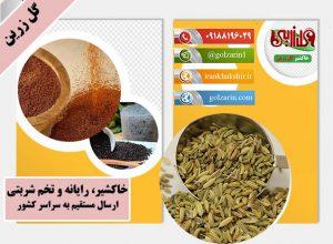 محل تولید بهترین رازیانه ایرانی