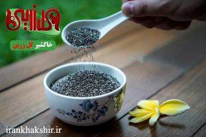 قیمت روز فروش تخمه شربتی