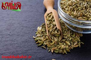قیمت خرید رازیانه عمده در همدان چند است؟